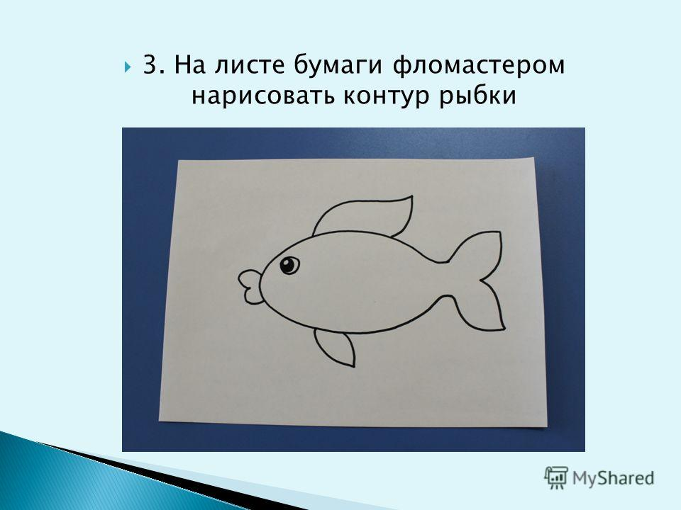 3. На листе бумаги фломастером нарисовать контур рыбки