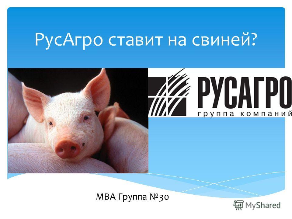 Рус Агро ставит на свиней? MBA Группа 30