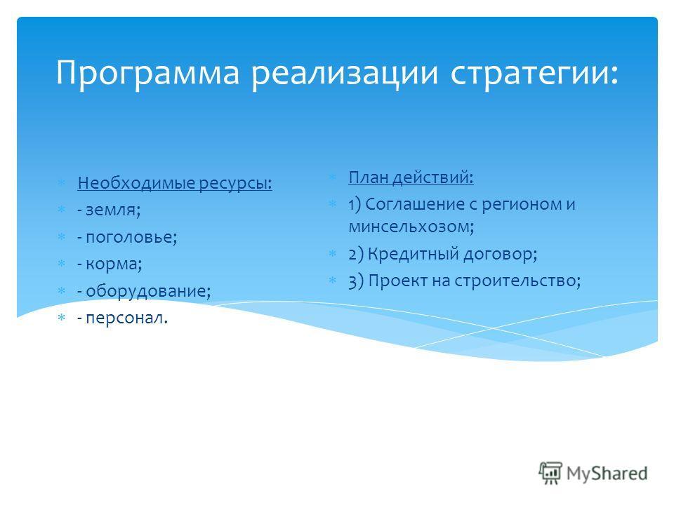 Программа реализации стратегии: Необходимые ресурсы: - земля; - поголовье; - корма; - оборудование; - персонал. План действий: 1) Соглашение с регионом и минсельхозом; 2) Кредитный договор; 3) Проект на строительство;