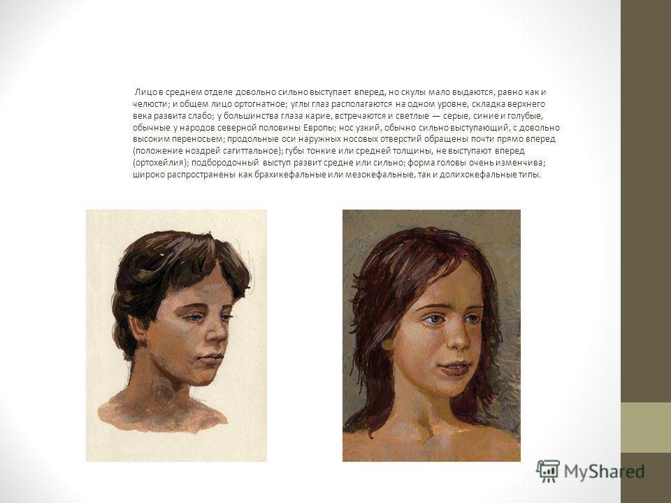 Лицо в среднем отделе довольно сильно выступает вперед, но скулы мало выдаются, равно как и челюсти; и общем лицо ортогнатное; углы глаз располагаются на одном уровне, складка верхнего века развита слабо; у большинства глаза карие, встречаются и свет