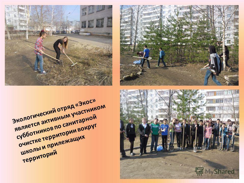 Экологический отряд «Экос» является активным участником субботников по санитарной очистке территории вокруг школы и прилежащих территорий