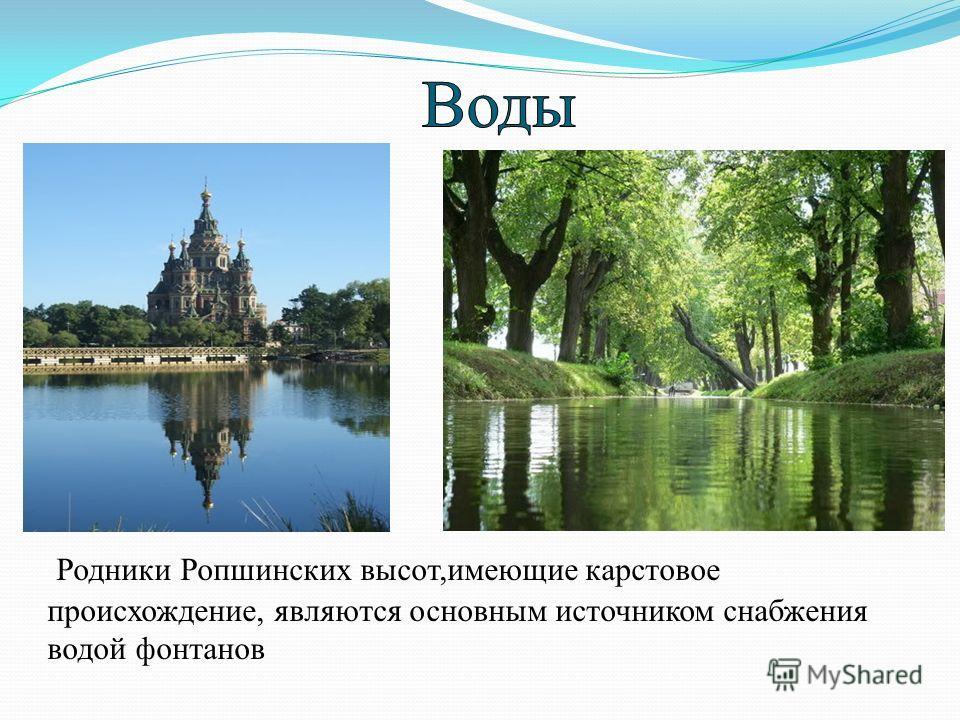 Родники Ропшинских высот,имеющие карстовое происхождение, являются основным источником снабжения водой фонтанов