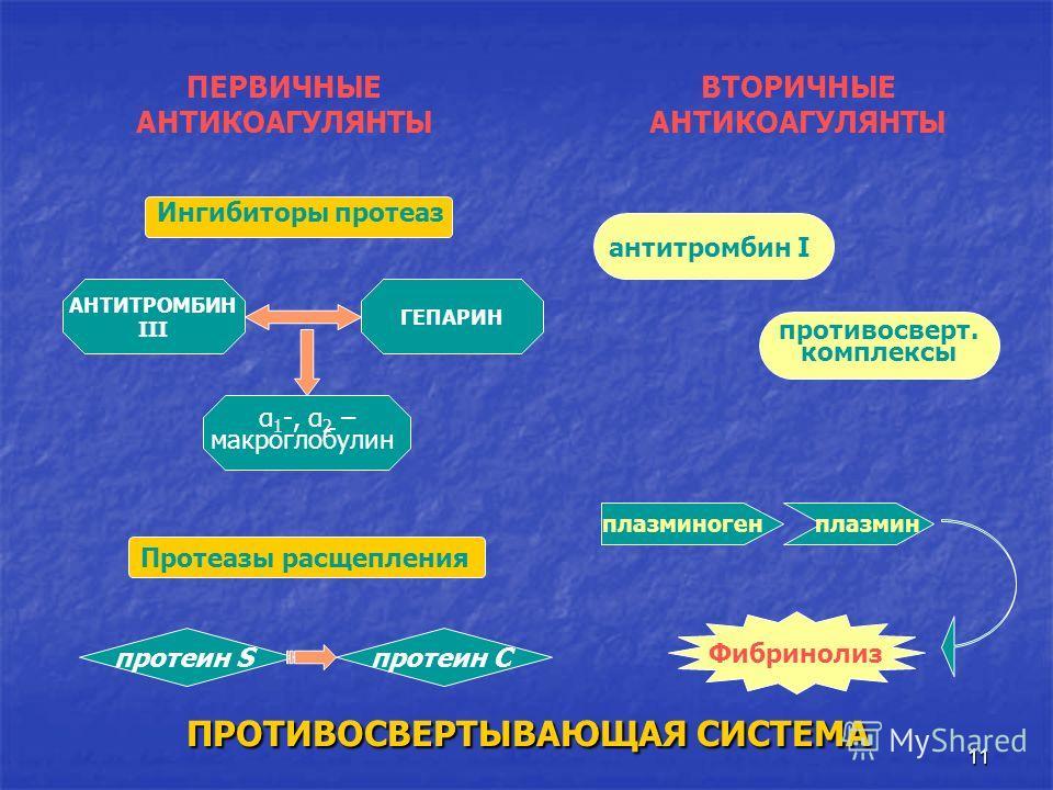 11 антитромбин I АНТИТРОМБИН III ГЕПАРИН Фибринолиз протеин S ПРОТИВОСВЕРТЫВАЮЩАЯ СИСТЕМА α 1 -, α 2 – макроглобулин Ингибиторы протеаз ПЕРВИЧНЫЕ АНТИКОАГУЛЯНТЫ Протеазы расщепления ВТОРИЧНЫЕ АНТИКОАГУЛЯНТЫ протеин С противосверт. комплексы плазминог
