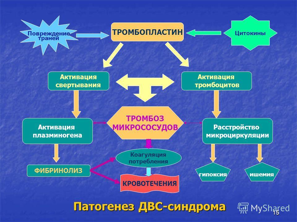 15 Патогенез ДВС-синдрома Активация тромбоцитов Активация свертывания ФИБРИНОЛИЗ Расстройство микроциркуляции Активация плазминогена ТРОМБОПЛАСТИН Повреждение траней Цитокины ТРОМБОЗ МИКРОСОСУДОВ Коагуляция потребления КРОВОТЕЧЕНИЯ гипоксияишемия