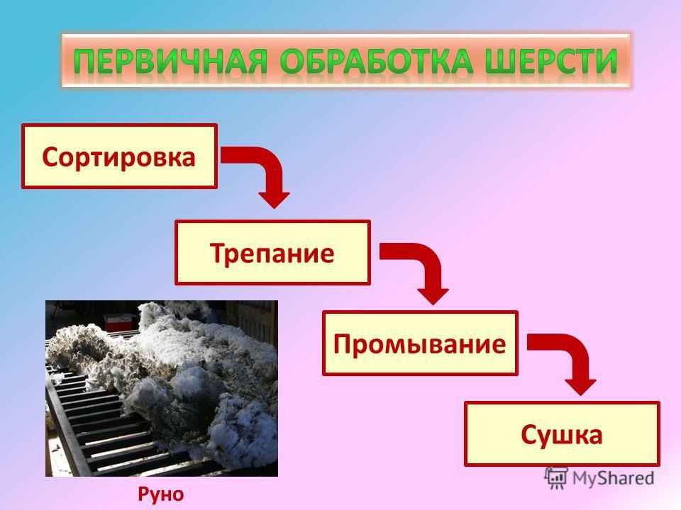 Сортировка Трепание Промывание Сушка Руно