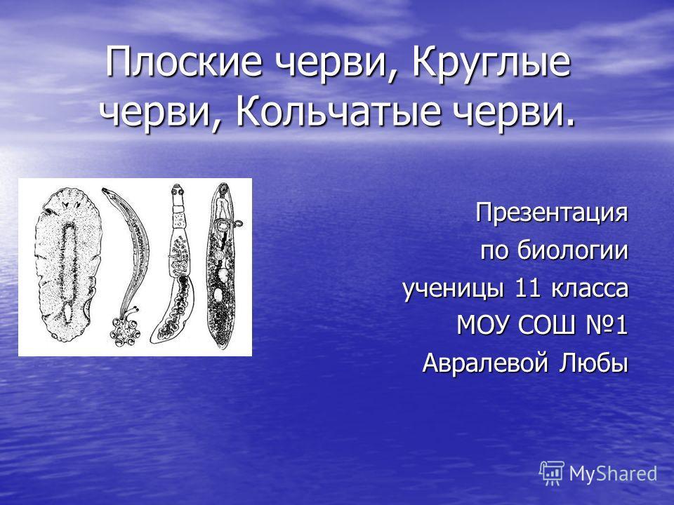 Плоские черви, Круглые черви, Кольчатые черви. Презентация по биологии ученицы 11 класса МОУ СОШ 1 Авралевой Любы