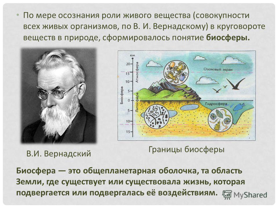 По мере осознания роли живого вещества (совокупности всех живых организмов, по В. И. Вернадскому) в круговороте веществ в природе, сформировалось понятие биосферы. Биосфера это общепланетарная оболочка, та область Земли, где существует или существова