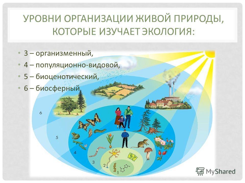 УРОВНИ ОРГАНИЗАЦИИ ЖИВОЙ ПРИРОДЫ, КОТОРЫЕ ИЗУЧАЕТ ЭКОЛОГИЯ: 3 – организменный, 4 – популяционно-видовой, 5 – биоценотический, 6 – биосферный