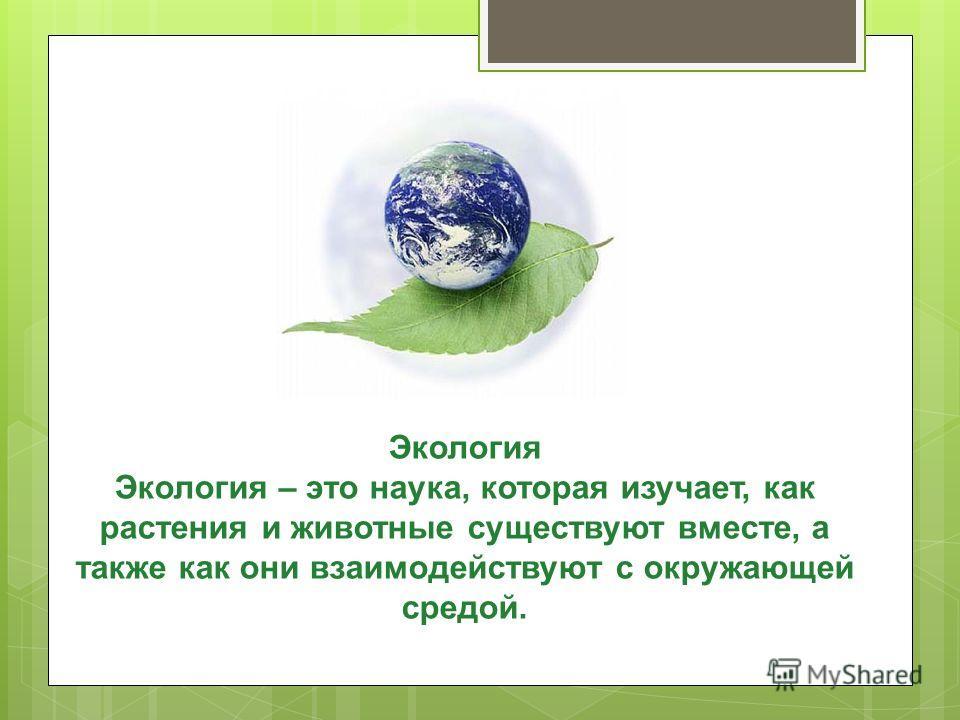 Экология Экология – это наука, которая изучает, как растения и животные существуют вместе, а также как они взаимодействуют с окружающей средой.