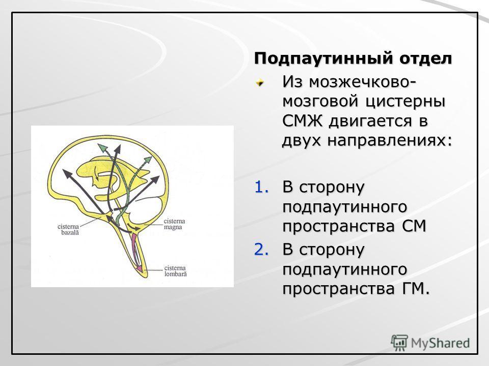 Подпаутинный отдел Из мозжечково- мозговой цистерны СМЖ двигается в двух направлениях: 1. В сторону подпаутинного пространства СМ 2. В сторону подпаутинного пространства ГМ.