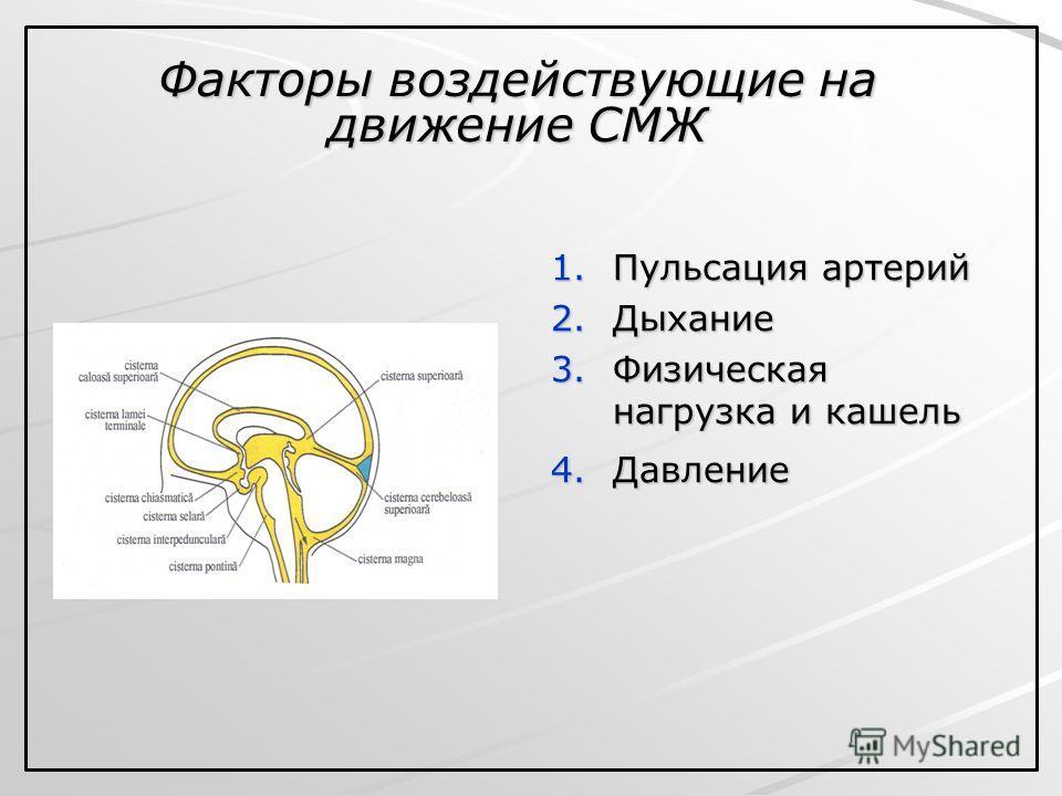 1. Пульсация артерий 2. Дыхание 3. Физическая нагрузка и кашель 4. Давление Факторы воздействующие на движение СМЖ