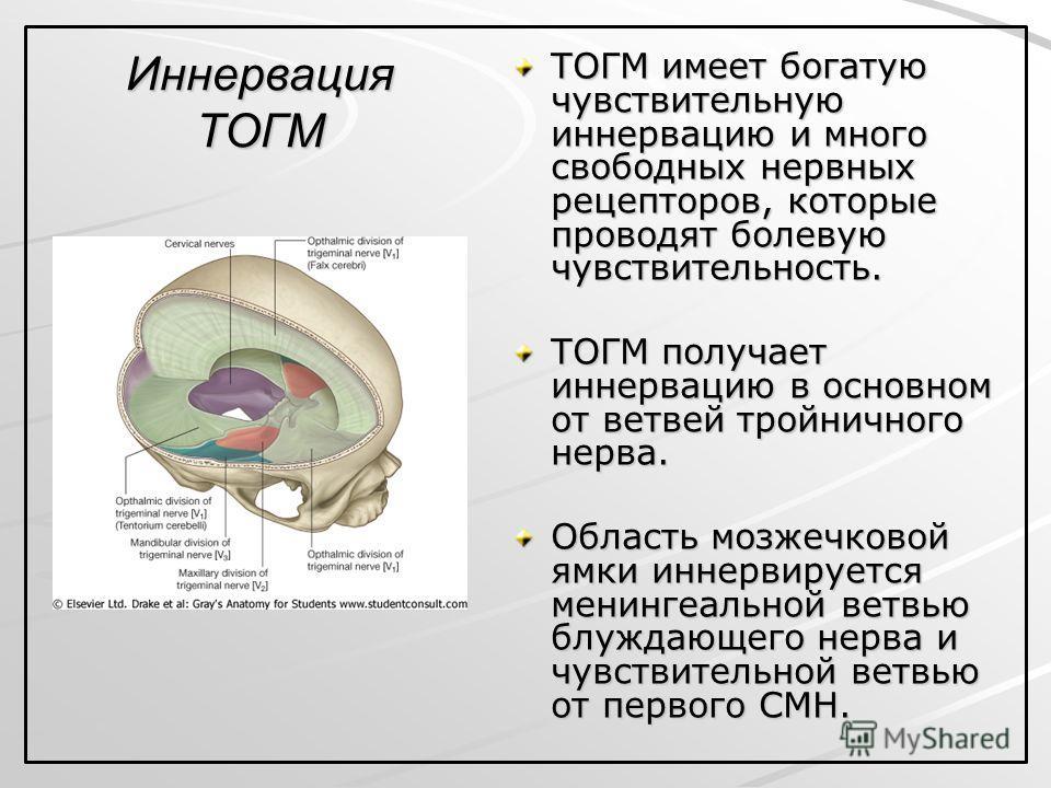 Иннервация ТОГМ ТОГМ имеет богатую чувствительную иннервацию и много свободных нервных рецепторов, которые проводят болевую чувствительность. ТОГМ получает иннервацию в основном от ветвей тройничного нерва. Область мозжечковой ямки иннервируется мени