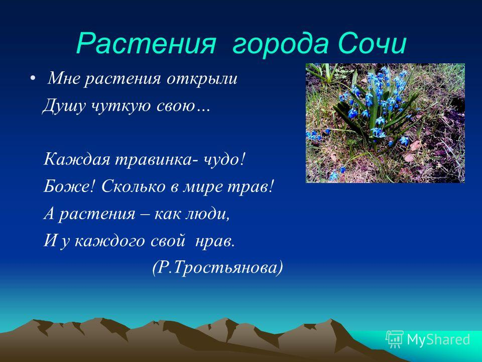 Растения города Сочи Мне растения открыли Душу чуткую свою… Каждая травинка- чудо! Боже! Сколько в мире трав! А растения – как люди, И у каждого свой нрав. (Р.Тростьянова)