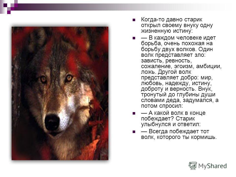 Когда-то давно старик открыл своему внуку одну жизненную истину: В каждом человеке идет борьба, очень похожая на борьбу двух волков. Один волк представляет зло: зависть, ревность, сожаление, эгоизм, амбиции, ложь. Другой волк представляет добро: мир,