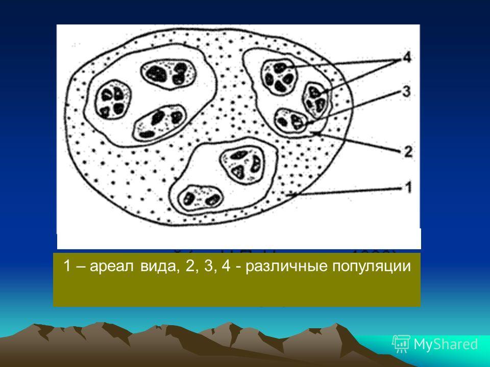 1 – ареал вида, 2, 3, 4 - различные популяции