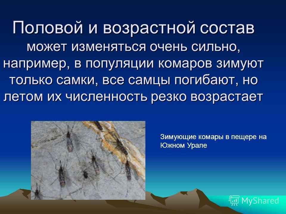 Половой и возрастной состав может изменяться очень сильно, например, в популяции комаров зимуют только самки, все самцы погибают, но летом их численность резко возрастает Зимующие комары в пещере на Южном Урале