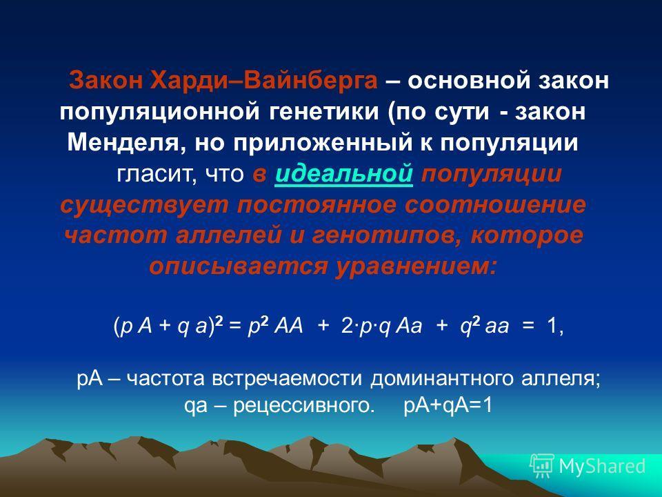Закон Харди–Вайнберга – основной закон популяционной генетики (по сути - закон Менделя, но приложенный к популяции гласит, что в идеальной популяции существует постоянное соотношение частот аллелей и генотипов, которое описывается уравнением: (p A +