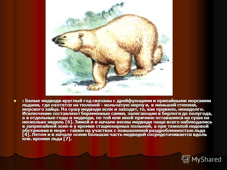 : Белые медведи круглый год связаны с дрейфующими и припайными морскими льдами, где охотятся на тюленей - кольчатую нерпу и, в меньшей степени, морского зайца. На сушу медведи если и заходят, то, как правило, ненадолго. Исключение составляют беременн