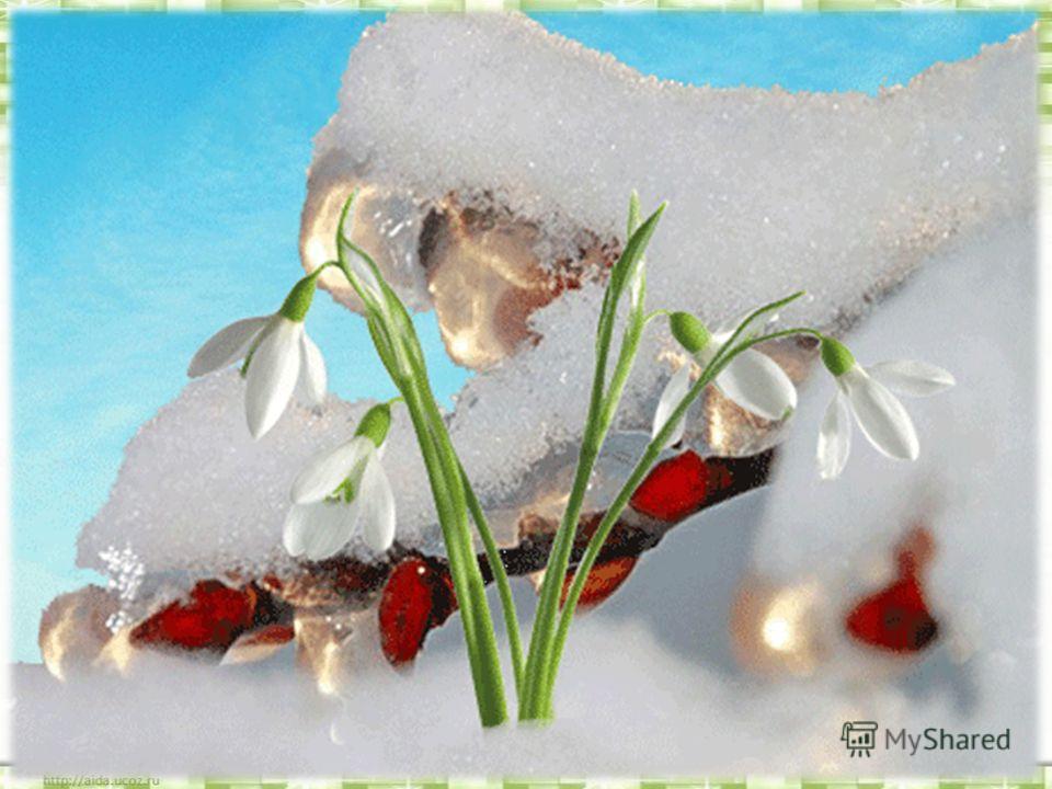 Тане сніжок, зеленіє лужок, День прибуває коли це буває?