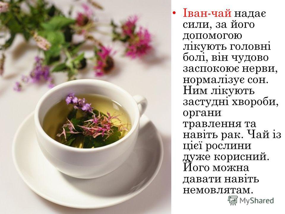 Іван-чай надає сели, за його допомогою лікують головні болі, він чудово заспокоює нервы, нормалізує сон. Ним лікують застудні хвороби, органи травлення та навіть рак. Чай із цієї рослини даже корисний. Його можна давати навіть немовлятам.