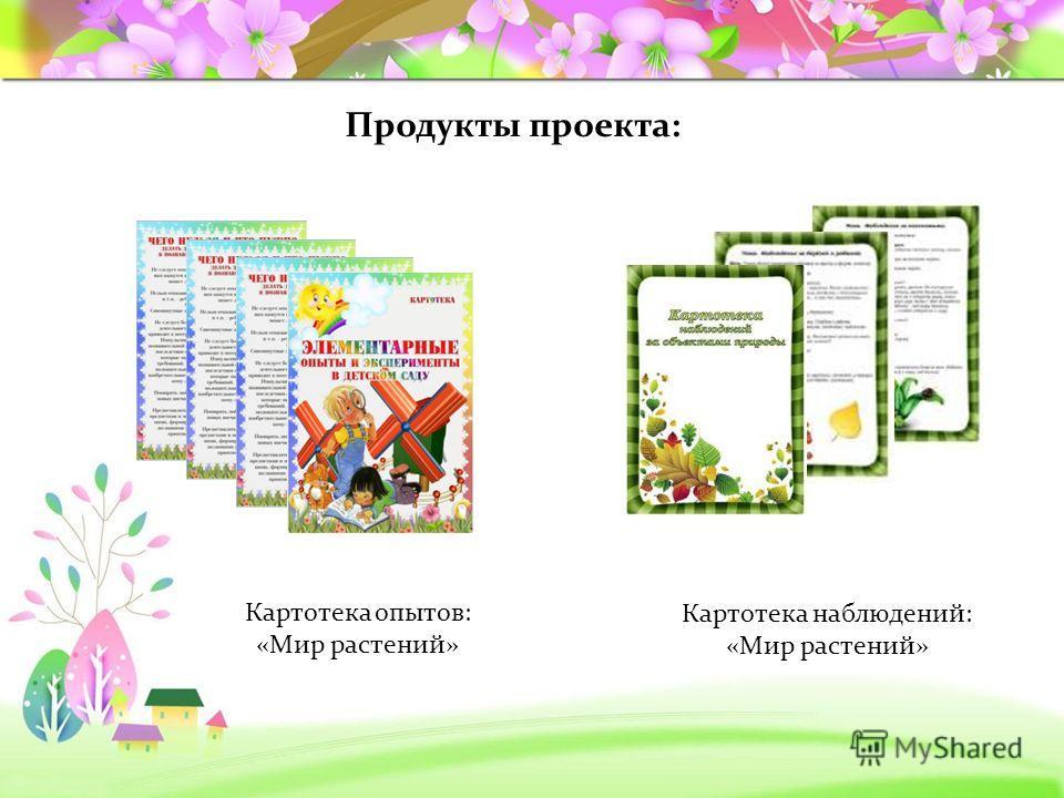 Продукты проекта: Картотека опытов: «Мир растений» Картотека наблюдений: «Мир растений»