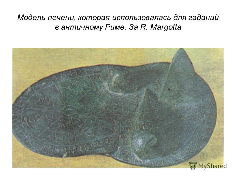 Модель печени, которая использовалась для гаданий в античному Риме. За R. Margotta