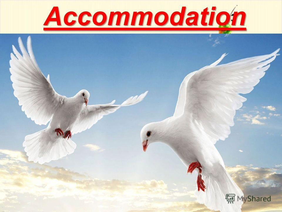 9 Accommodation