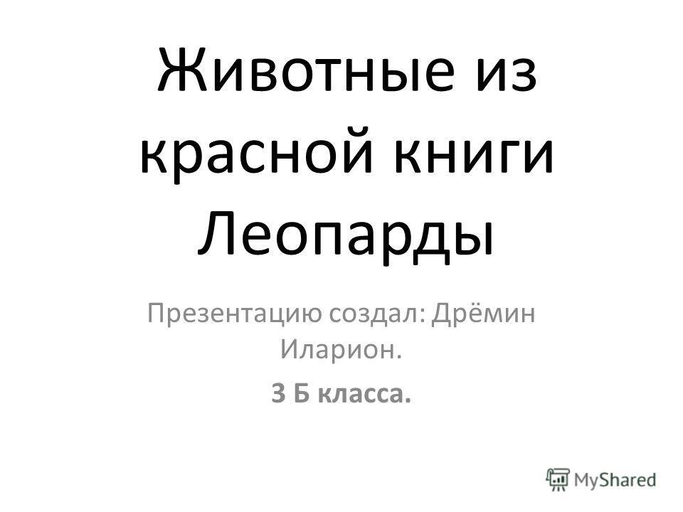 Животные из красной книги Леопарды Презентацию создал: Дрёмин Иларион. 3 Б класса.