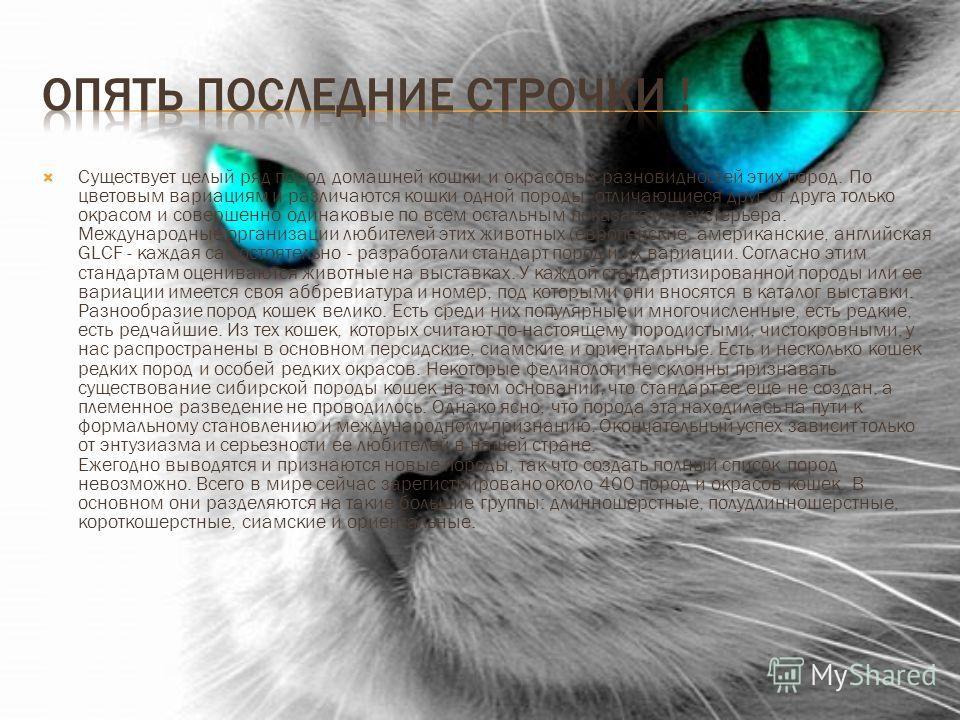 Существует целый ряд пород домашней кошки и окрасовых разновидностей этих пород. По цветовым вариациям и различаются кошки одной породы, отличающиеся друг от друга только окрасом и совершенно одинаковые по всем остальным показателям экстерьера. Между