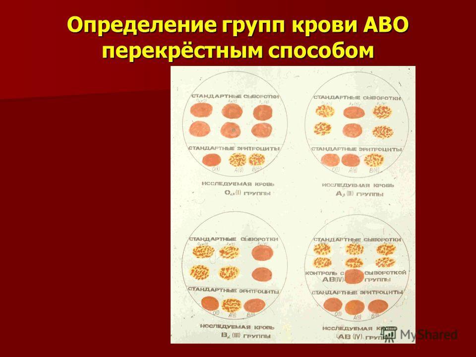 Определение групп крови АВО перекрёстным способом