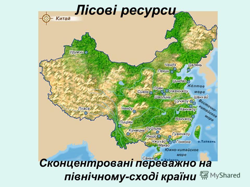 Лісові ресурси Сконцентровані переважно на північному-сході країни