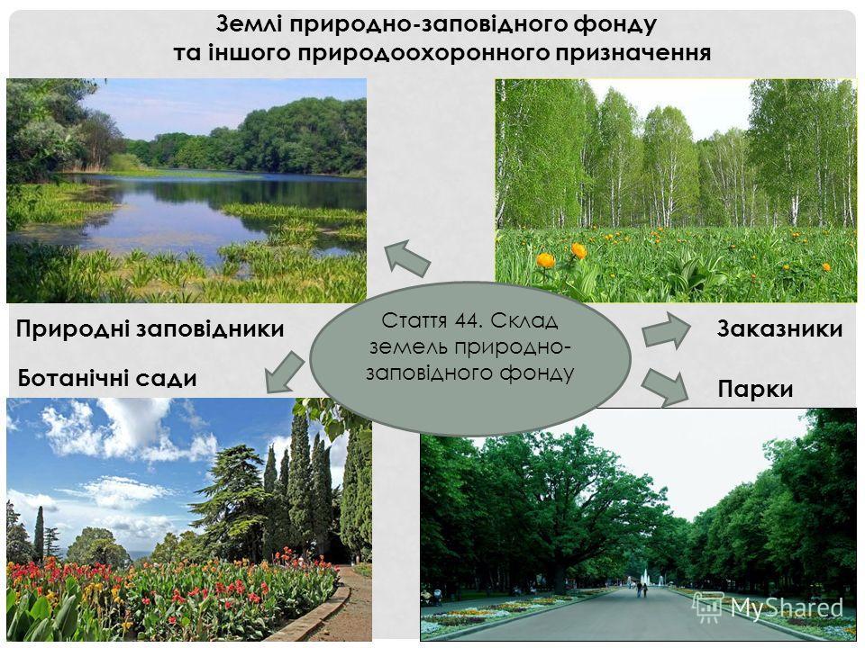 Землі природно-заповідного фонду та іншого природоохоронного призначення Заказники Ботанічні сади Парки Природні заповідники Стаття 44. Склад земель природно- заповідного фонду