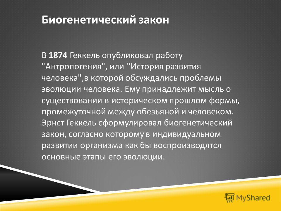 Биогенетический закон В 1874 Геккель опубликовал работу