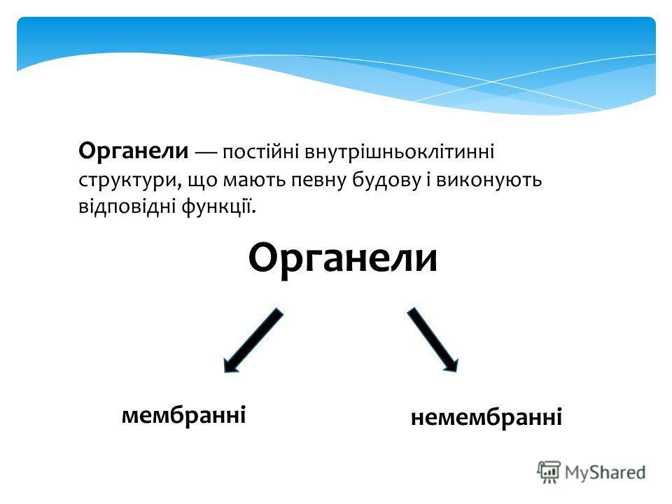 Органели постійні внутрішньоклітинні структуры, що мають певну будову і виконують відповідні функції. Органели мембранні немембранні