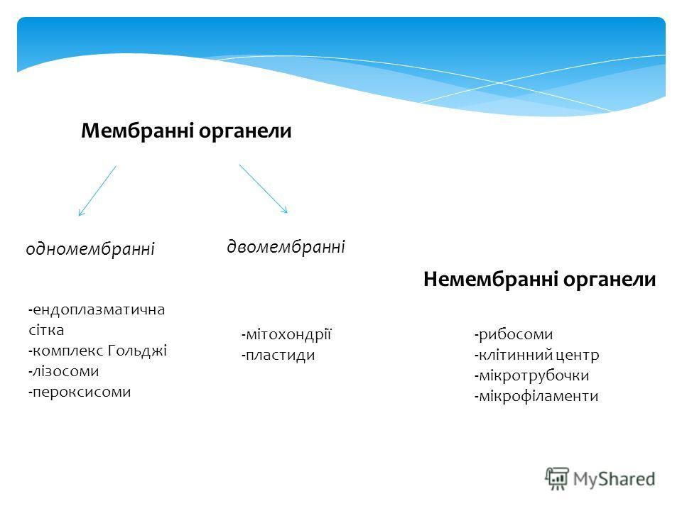 Мембранні органеллли одномембранні двомембранні -ендоплазматична сітка -комплекс Гольджі -лізосоми -пероксисомы -мітохондрії -пластиды Немембранні органеллли -рибосомы -клітинний центр -мікротрубочки -мікрофіламенти