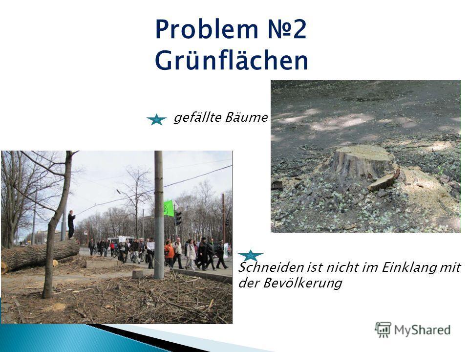 Problem 2 Grünflächen gefällte Bäume Schneiden ist nicht im Einklang mit der Bevölkerung