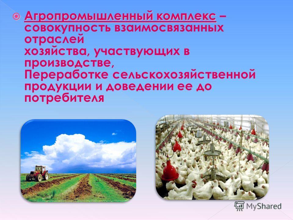 Агропромышленный комплекс Агропромышленный комплекс – совокупность взаимосвязанных отраслей хозяйства, участвующих в производстве, Переработке сельскохозяйственной продукции и доведении ее до потребителя