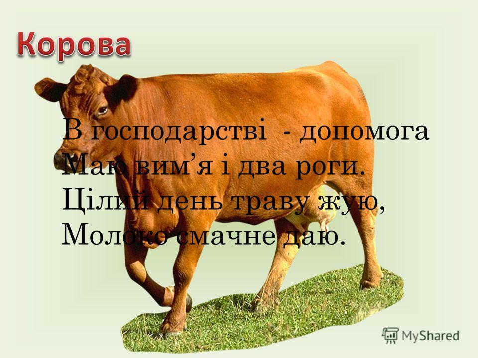В господарстві - допомога Маю вимя і два роки. Цілий день траву жую, Молоко смачно даю.