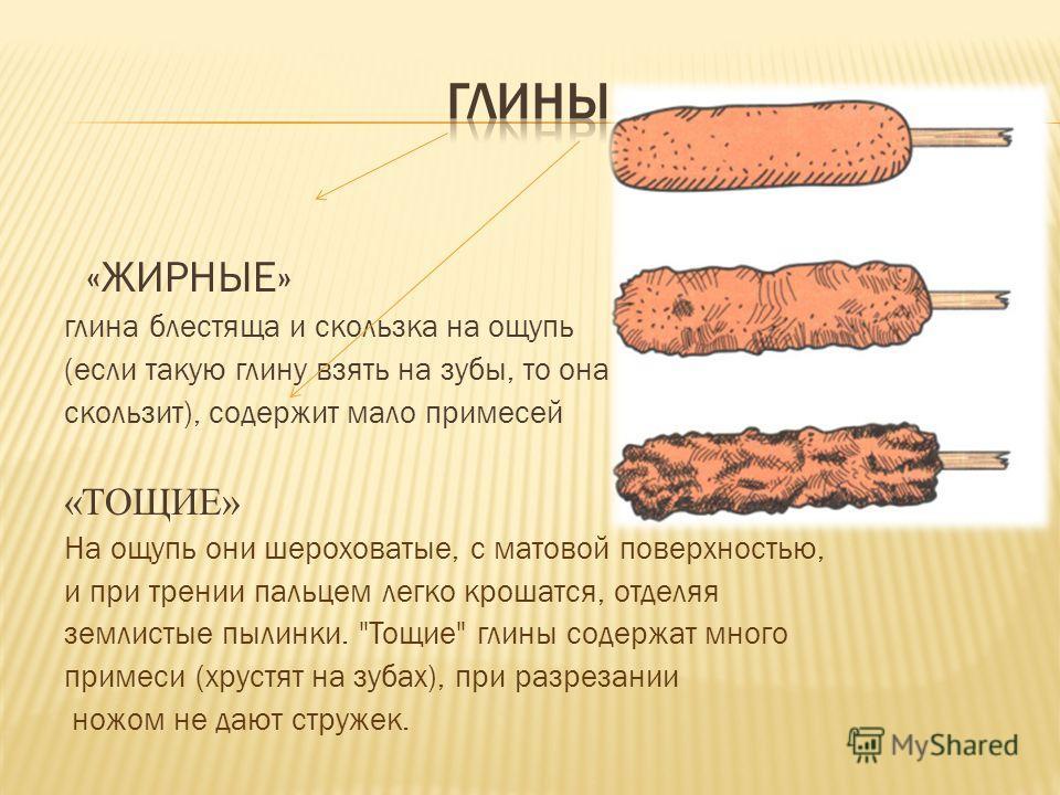 «ЖИРНЫЕ» глина блестяща и скользка на ощупь (если такую глину взять на зубы, то она скользит), содержит мало примесей «ТОЩИЕ» На ощупь они шероховатые, с матовой поверхностью, и при трении пальцем легко крошатся, отделяя землистые пылинки.