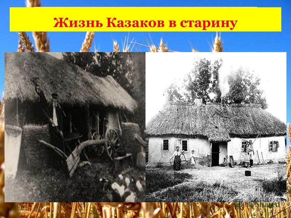 Жизнь Казаков в старину 10