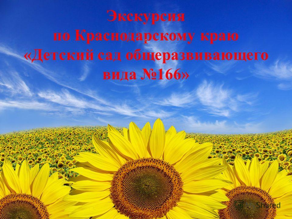 Экскурсия по Краснодарскому краю «Детский сад общеразвивающего вида 166» 5