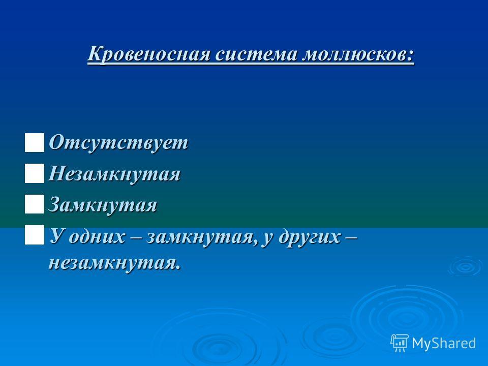 Кровеносная система моллюсков: Отсутствует Отсутствует Незамкнутая Незамкнутая Замкнутая Замкнутая У одних – замкнутая, у других – незамкнутая. У одних – замкнутая, у других – незамкнутая.
