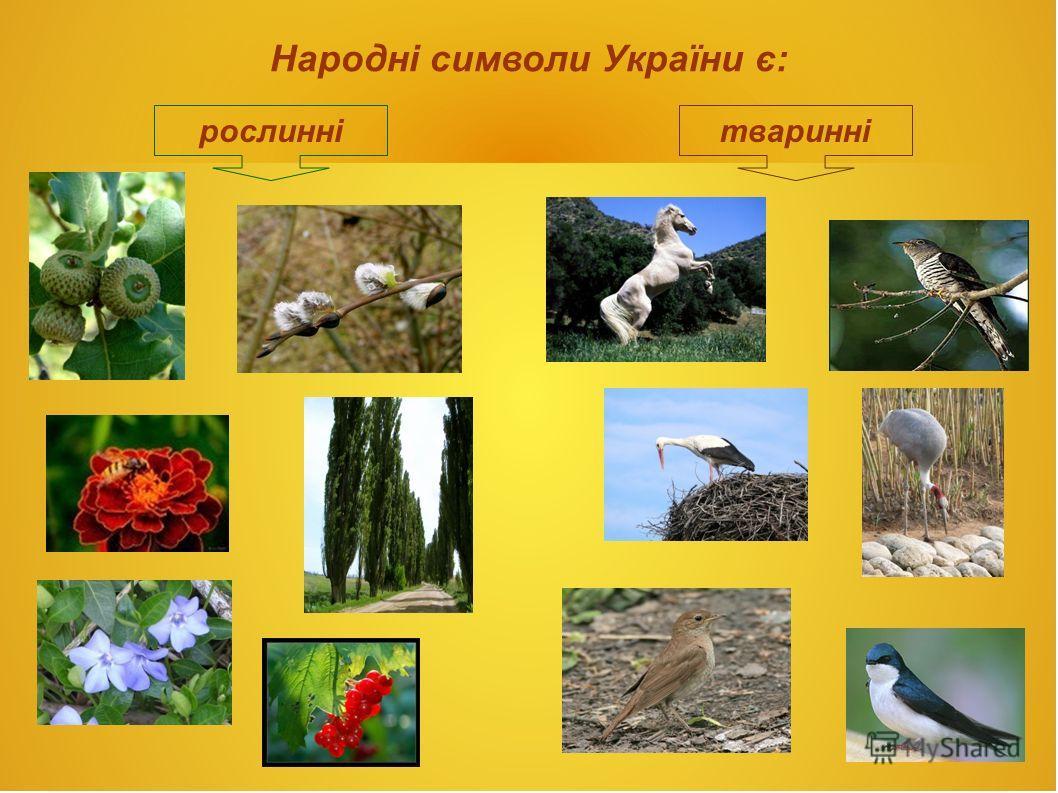 Народні символи України є: рослиннітваринні