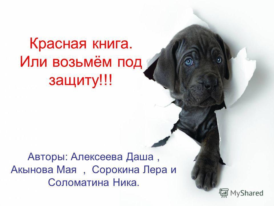 Красная книга. Или возьмём под защиту!!! Авторы: Алексеева Даша, Акынова Мая, Сорокина Лера и Соломатина Ника.