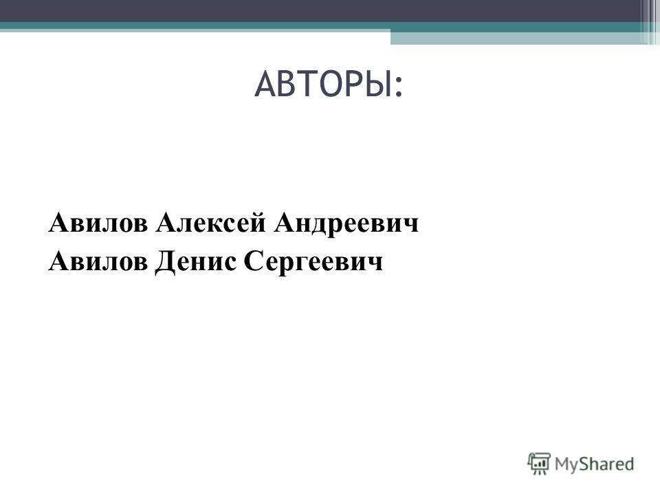 АВТОРЫ: Авилов Алексей Андреевич Авилов Денис Сергеевич