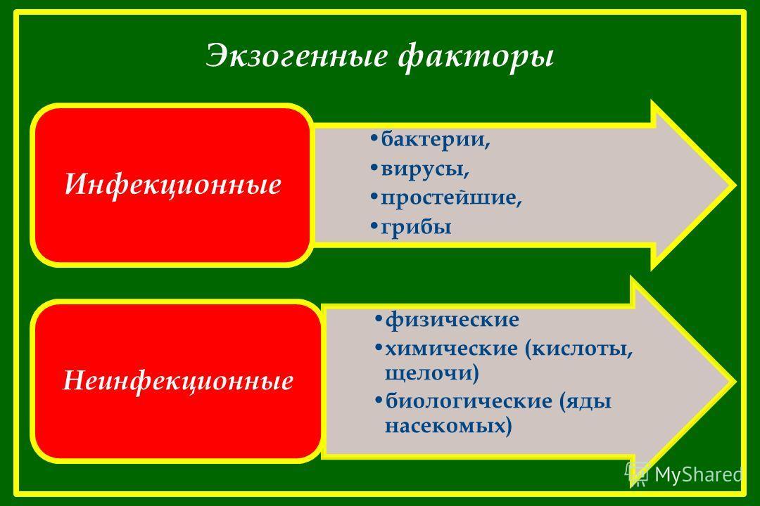 Экзогенные факторы бактерии, вирусы, простейшие, грибы Инфекционные физические химические (кислоты, щелочи) биологические (яды насекомых) Неинфекционные