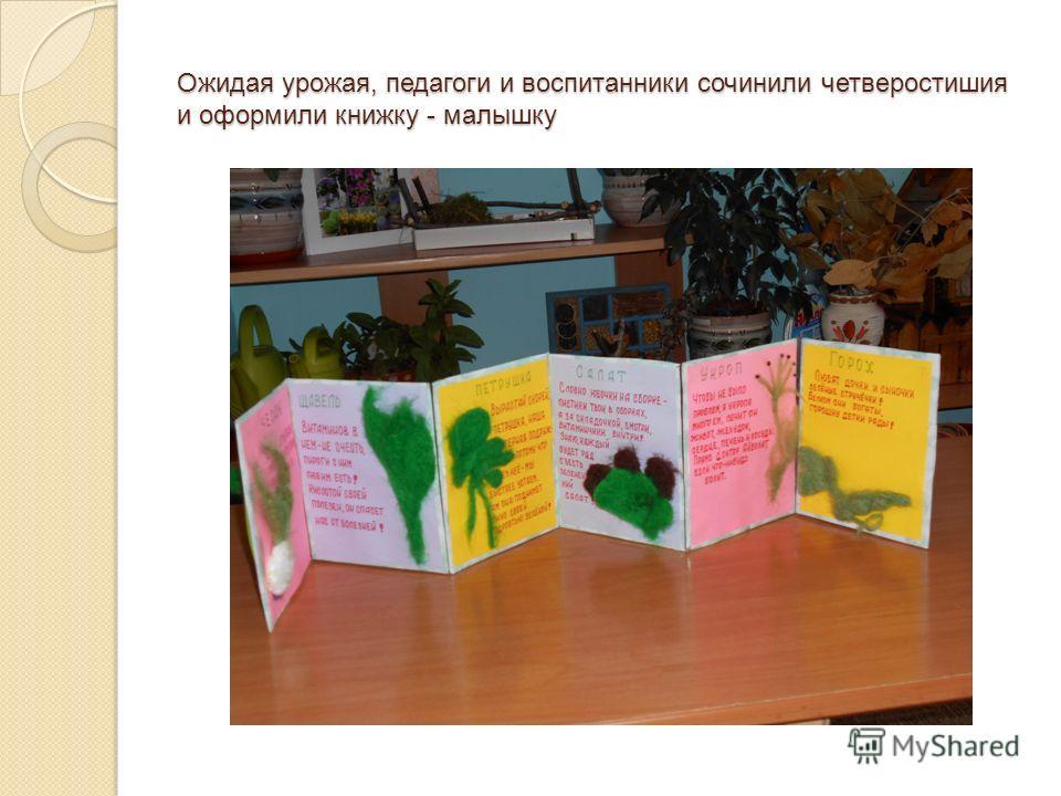 Ожидая урожая, педагоги и воспитанники сочинили четверостишия и оформили книжку - малышку