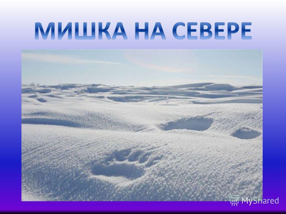 Картинки для у и картинки для папки передвижки зима