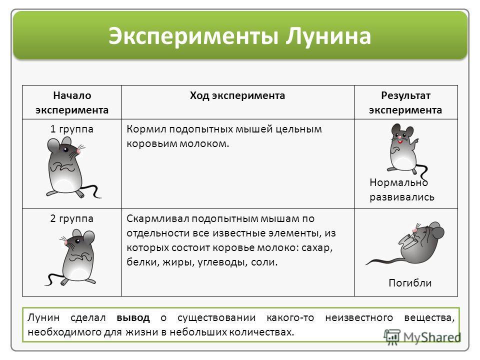 Начало эксперимента Ход эксперимента Результат эксперимента 1 группа Кормил подопытных мышей цельным коровьим молоком. 2 группа Скармливал подопытным мышам по отдельности все известные элементы, из которых состоит коровье молоко: сахар, белки, жиры,