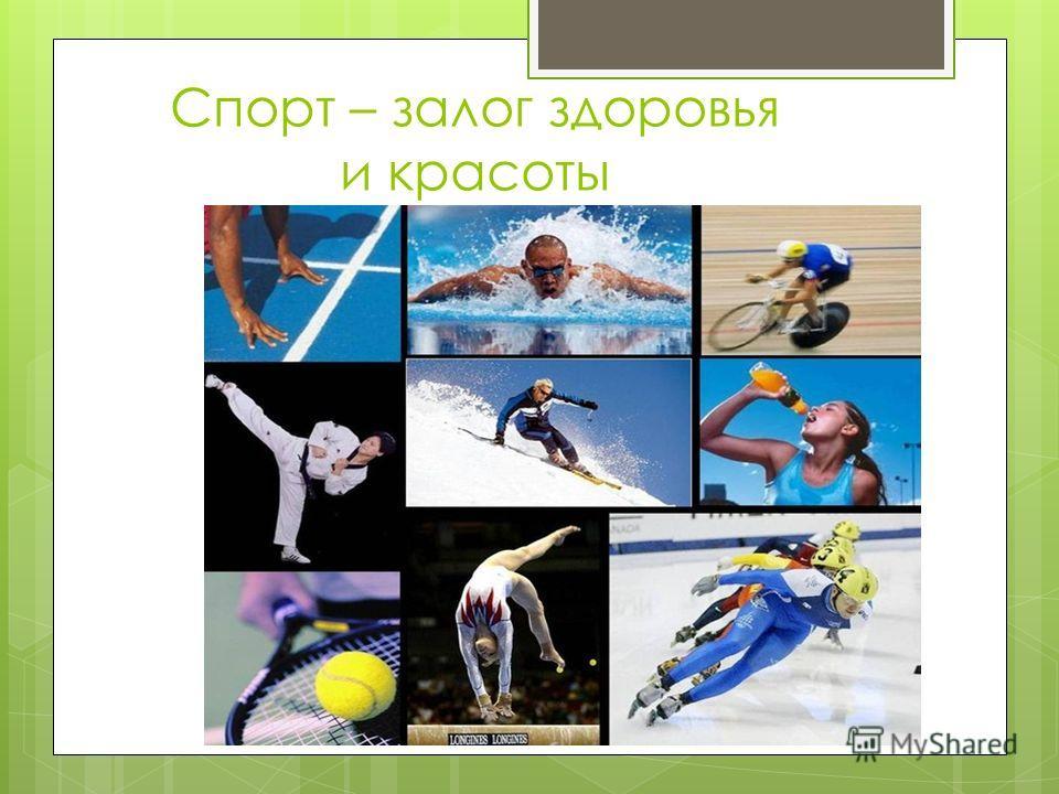 Спорт – залог здоровья и красоты